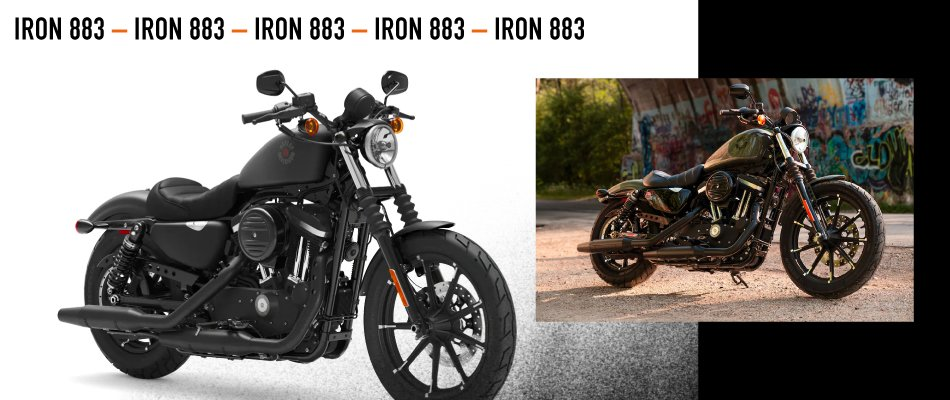 Discover the 2021 HD Iron 883